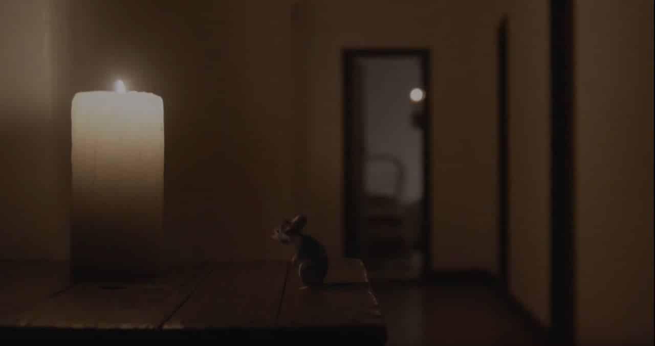 raton-vela